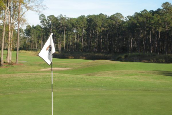 how to play a long par 3